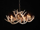 whitetail deer antler chandelier image