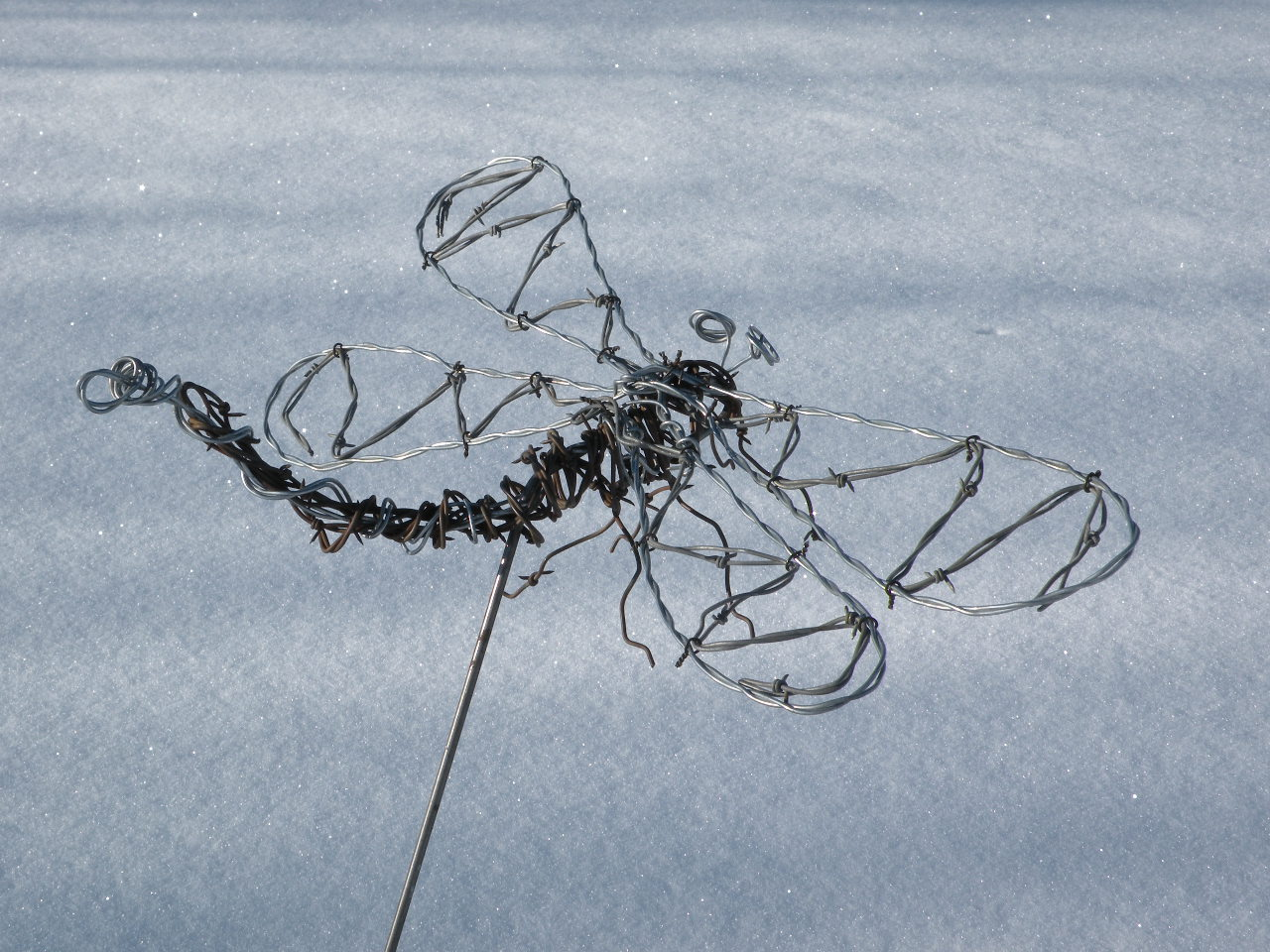 Dragon Fly wire sculpture