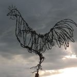 Barbed Wire Rooster