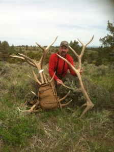Elk Antlers 5/18/2014