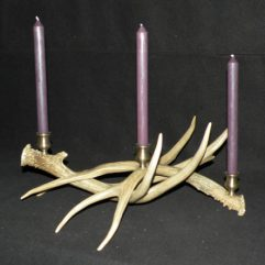 Mule deer antler multiple taper candle holder image